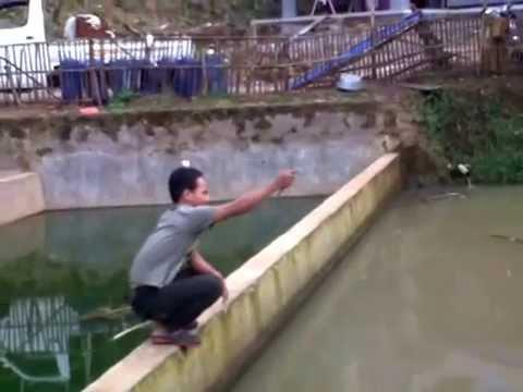 Mancing Ikan Bawal