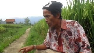 Indahnya Alam pegunungan di kaki gunung Gede Sukabumi Jawa Barat