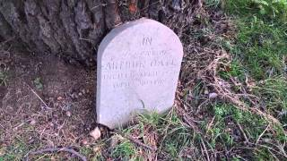 getlinkyoutube.com-The Slow and Tragic Death of a Beautiful Victorian Cemetery (Turn on closed caption)
