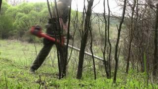 getlinkyoutube.com-husqvarna 265rx clearing saw cutting plum