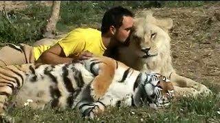 getlinkyoutube.com-Lion Park South Africa Freundschaft zu Raubtieren, Löwe & Tiger