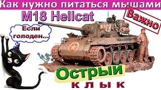 getlinkyoutube.com-M18 Hellcat Острый клык! Как играть на Хелкат – как на среднем танке или как на ПТ? Виртуозная игра!