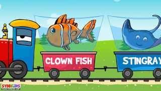 getlinkyoutube.com-The Sea Animal Words for Toddlers | Sea Animals Train
