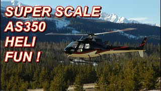AS350 Super Scale RC Helicopter - Inside & Out