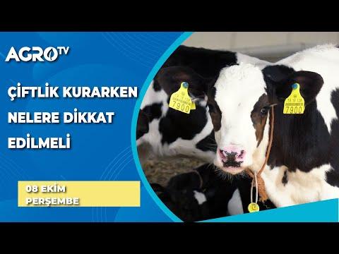 Çiftlik Kurmak İsteyenler Nelere Dikkat Etmeli / AGRO TV