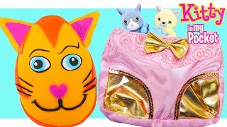 getlinkyoutube.com-Cute Kitty Clutch/Purse Play Doh Kitty in My Pocket Surprise Egg and Toy Blind Bags a DCTC Video