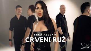 getlinkyoutube.com-SEKA ALEKSIC - CRVENI RUZ (OFFICIAL VIDEO)