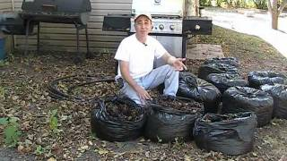 getlinkyoutube.com-EZ Autumn Composting with Leaves!