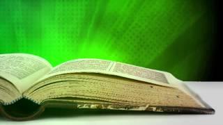 getlinkyoutube.com-Bible, green (video loop)