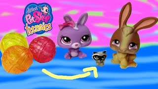 getlinkyoutube.com-LPS Teensies Tiny Small Littlest Pet Shop Series Collection Opening Unboxing Cookieswirlc