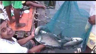 Wow !! Amazing Angling Competition Near Kolkata, West Bengal, India | Fishing Video