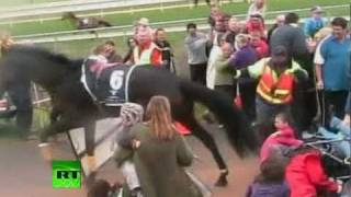 Race horse jumps into crowd: Dramatic amateur video