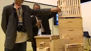 getlinkyoutube.com-Вулик нової конструкції - Апімондія 2013