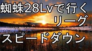 【城ドラ】蜘蛛Lv28で行くダイヤリーグ!スピードダウンをひいていくぅ【城とドラゴン】