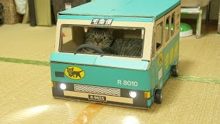 getlinkyoutube.com-猫を乗せ走る、クロネコヤマトの段ボールトラック~Cat Ride in Custom cardboard car~