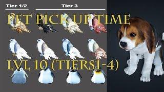 getlinkyoutube.com-All pets(tier 1-4) level 10 pick up time BDO!!! Black Desert Online v