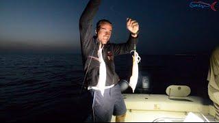 getlinkyoutube.com-Pesca e ricerca di calamari di giorno!