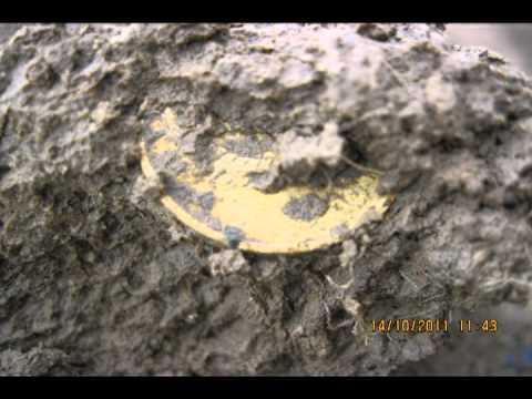 Коп монет на поле Советов