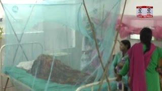देहरादून में डेंगू का प्रकोप