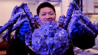 getlinkyoutube.com-Top 5 Biggest Crabs Ever Caught