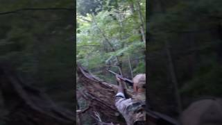 Violent Black Bear Attack After Being Shot Out Of A Tree!
