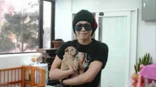getlinkyoutube.com-Big Bang playing with dogs, really cute!