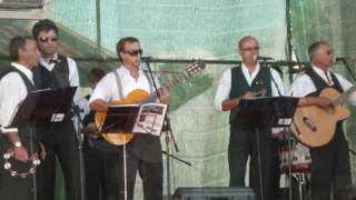 getlinkyoutube.com-Campos do Alentejo - Os lírios são lírios