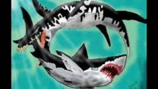 getlinkyoutube.com-Liopleurodon vs. Megalodon [voting for the 2010 winer]