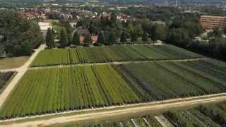 getlinkyoutube.com-Baumschule Kraemer Imagefilm