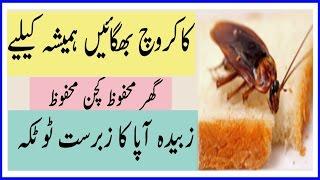 cockroach  bhagaen hmesha k liye zubaida apa