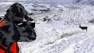 getlinkyoutube.com-A Deer Hunting Adventure