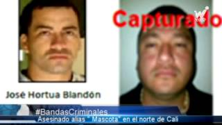 "Asesinado en el norte de Cali alias ""Mascota"", presunto sucesor de ""Diego Rastrojo"""