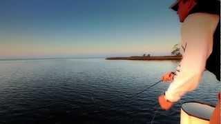 getlinkyoutube.com-Panama City Beach Fly Fishing