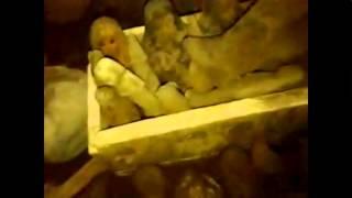 getlinkyoutube.com-جهاز كشف الذهب جرين لاين 2017 -اكتشاف مقبرة فرعونية بجهاز التصويري جرين لاين
