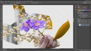 getlinkyoutube.com-PHOTOSHOP CS6 (BỘ MỚI) Bai 9: Remove Back With Pen Tool