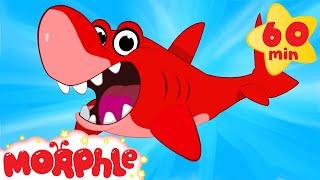 getlinkyoutube.com-Shark Adventures with Morphle ( +1 hour My Magic Pet Morphle Kids Animal Videos Compilation)