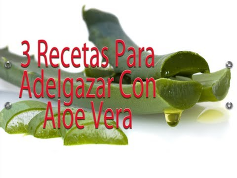 Aloe Vera Para Bajar De Peso
