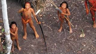 getlinkyoutube.com-Uncontacted Amazon Tribe: First ever aerial footage