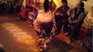 getlinkyoutube.com-Flamenco Dance by Spanish Gypsies Part 1