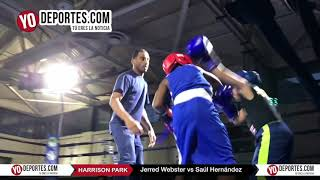 Jerred Webster vs Saul Hernandez Chicago Harrison Park Boxing Event