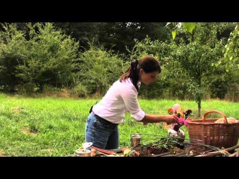 Wohnen & Garten Deko-Video: Apfel-Dahlien-Strauß