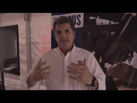 ABS Uruguay: Lanzamiento Beef InFocus