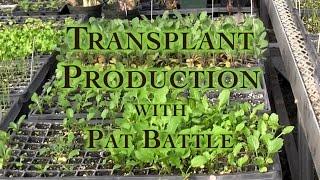 getlinkyoutube.com-Transplant Production