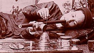 getlinkyoutube.com-The Surprising History of Drugs