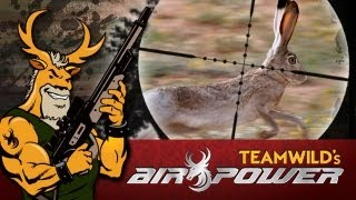 getlinkyoutube.com-Extreme Airgun Hunting - Texan Rabbits with the Daystate Wolverine .303