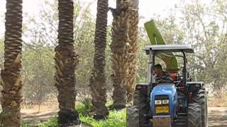 getlinkyoutube.com-Date Palm pollinating machine .wmv