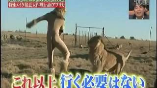 getlinkyoutube.com-Lion Japanese Prank Disguise