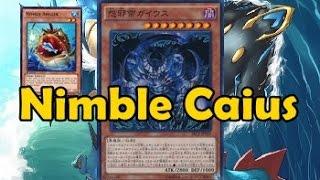 Nimble Caius the Mega Monarch style
