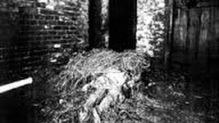 getlinkyoutube.com-ドイツ史上最も不可解な未解決凶悪事件ヒンターカイフェック事件