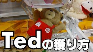 【UFOキャッチャー】Tedの獲り方!